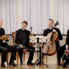 The Auryn Quartet.